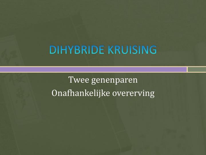 DIHYBRIDE KRUISING
