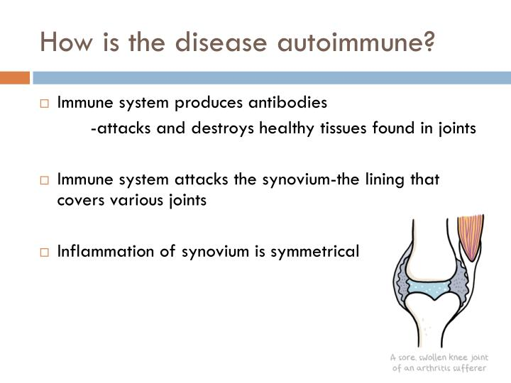 How is the disease autoimmune?