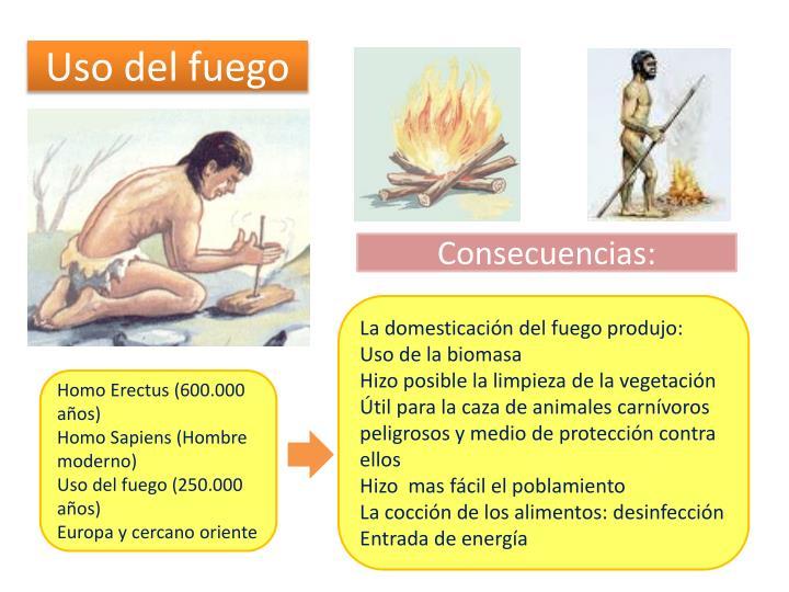 Uso del fuego