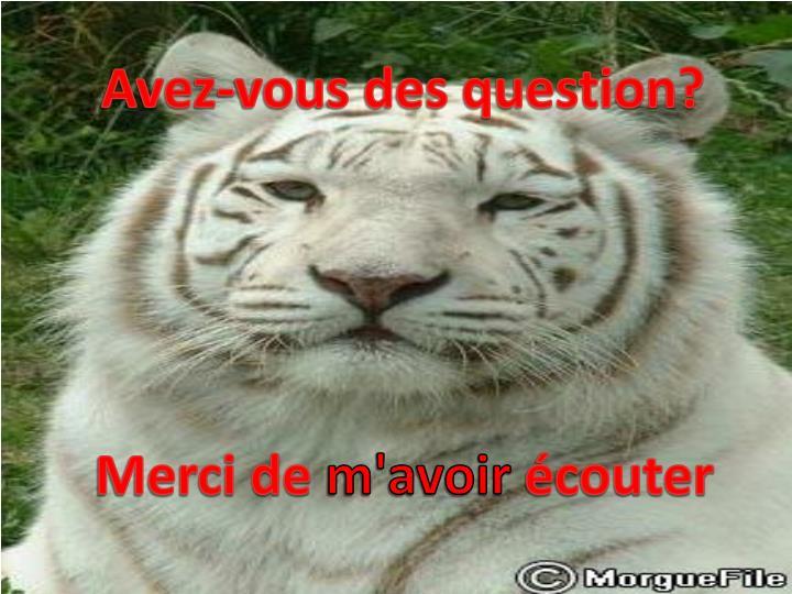 Avez-vous des question?