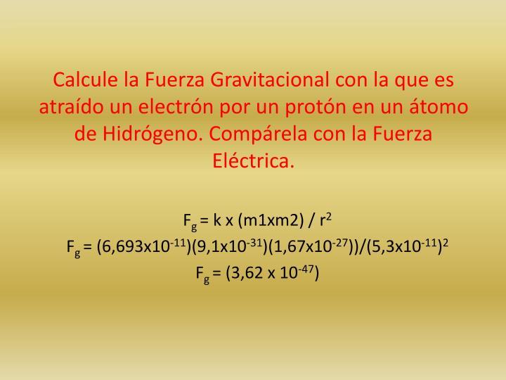 Calcule la Fuerza Gravitacional con la que es atraído un electrón por un protón en un átomo de Hidrógeno. Compárela con la Fuerza Eléctrica.