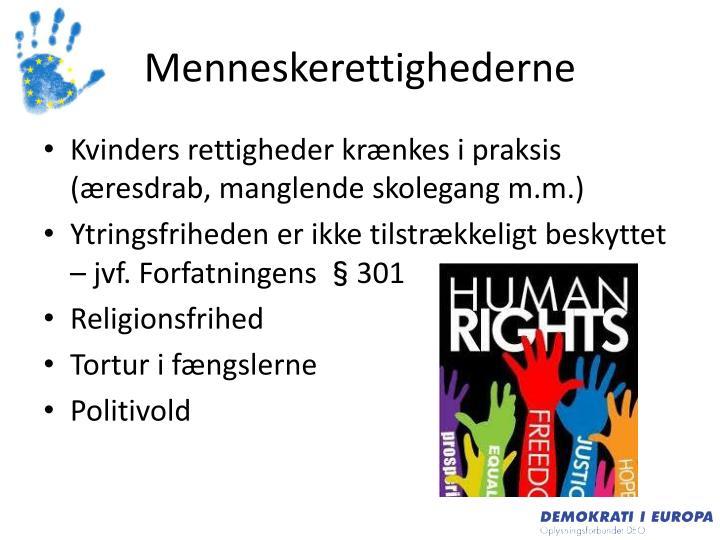 Menneskerettighederne