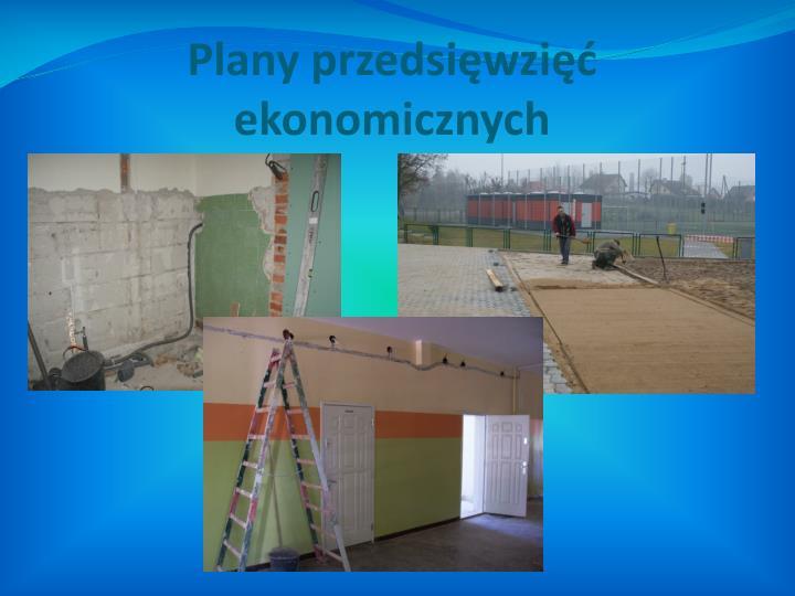 Plany przedsięwzięć ekonomicznych