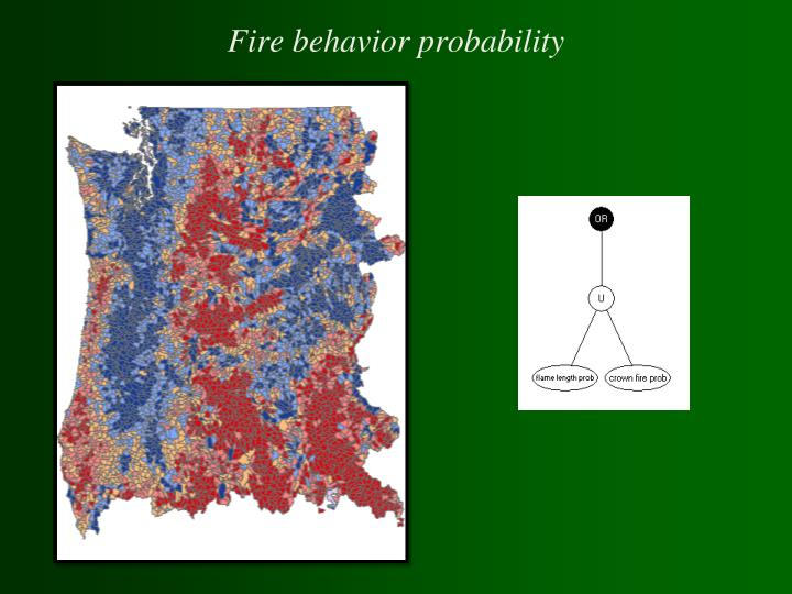 Fire behavior probability