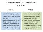 comparison raster and vector formats