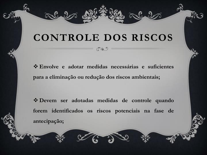 CONTROLE DOS RISCOS