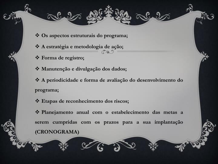 Os aspectos estruturais do programa;