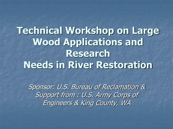 Technical workshop on large wood applications and research needs in river restoration