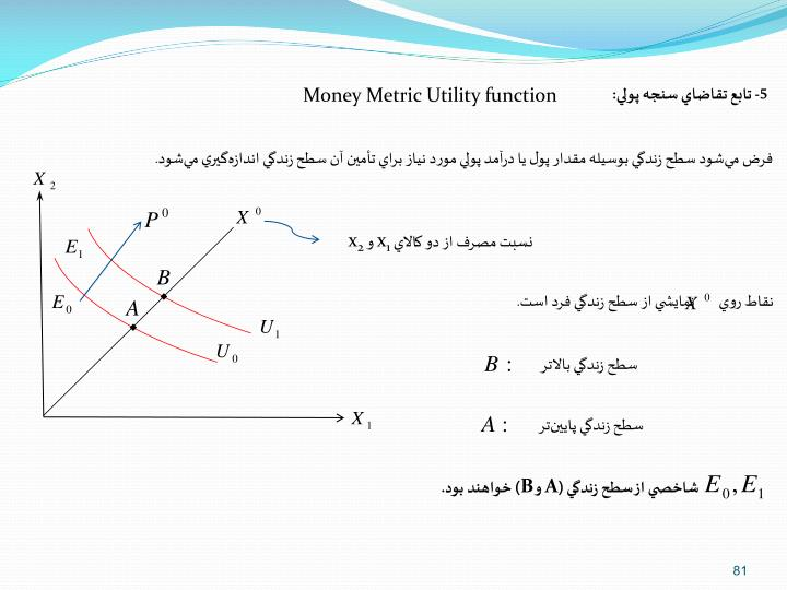 Money Metric Utility function