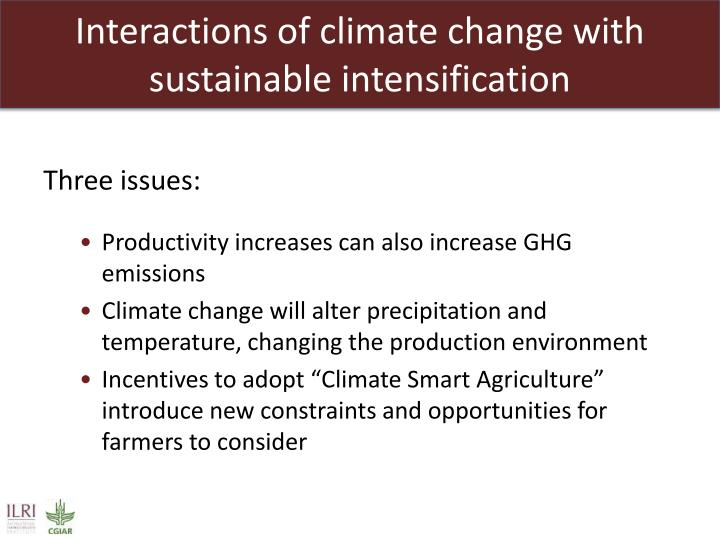 Interactions of climate change with sustainable intensification