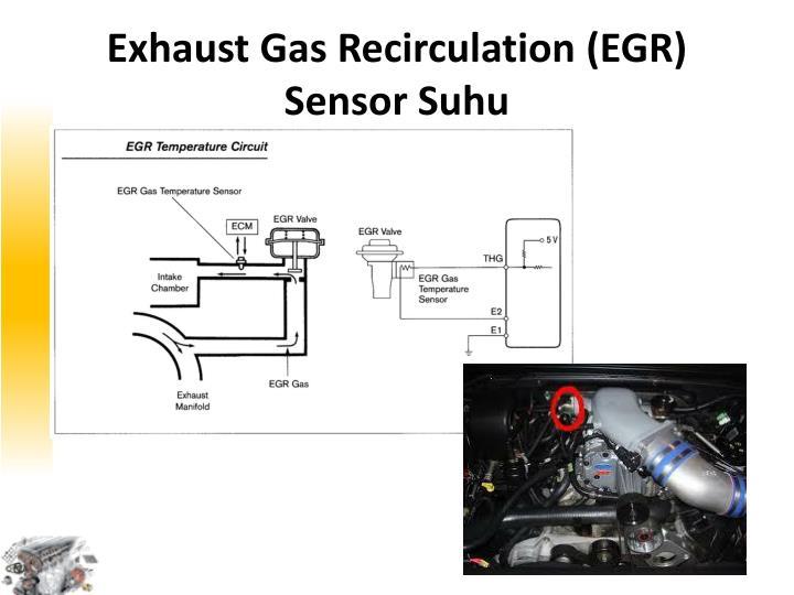 Exhaust Gas Recirculation (EGR) Sensor Suh