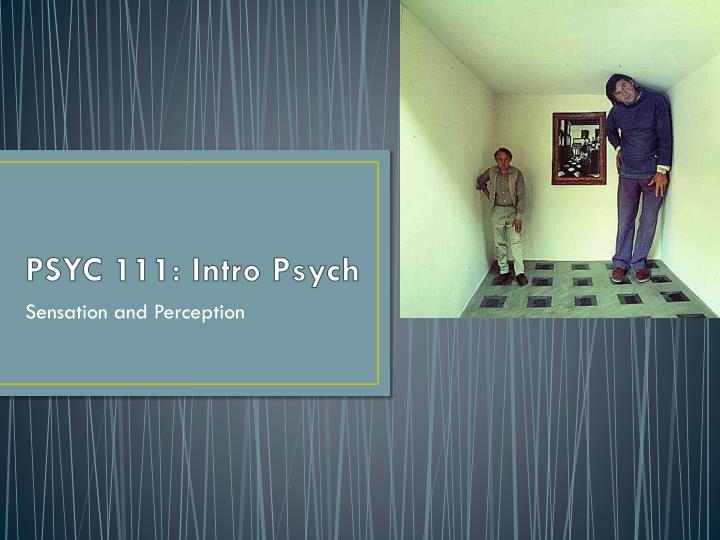 PSYC 111: Intro Psych