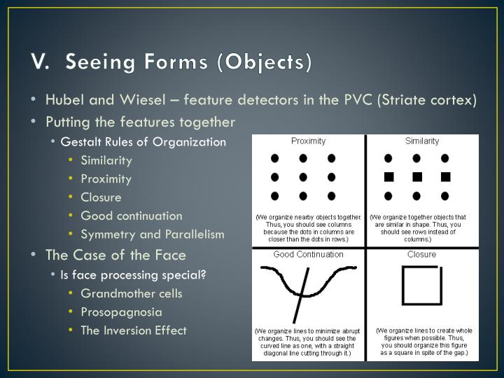 V.  Seeing Forms (Objects)