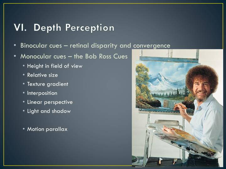 VI.  Depth Perception