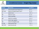 conditional jumps single flag jumps