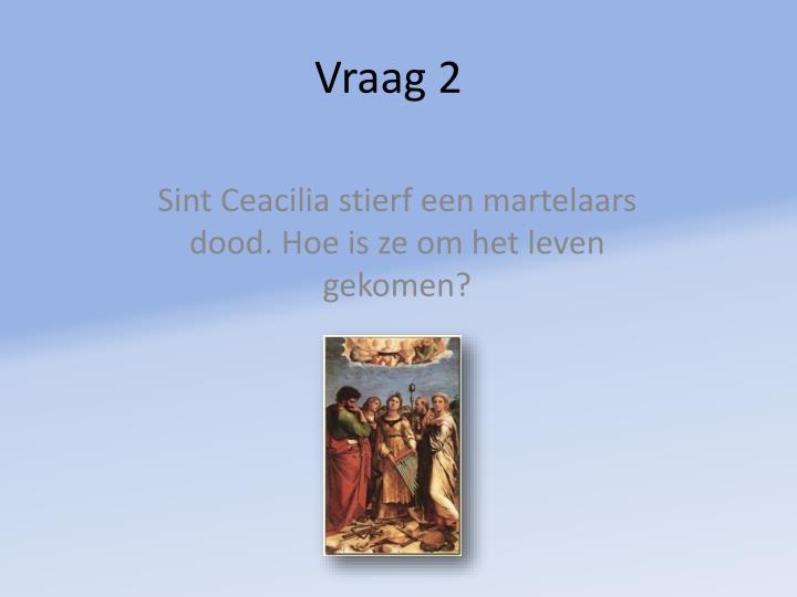 Vraag 2