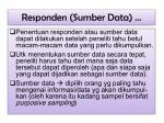 responden sumber data