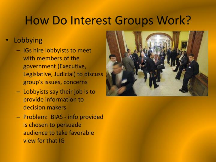 How Do Interest Groups Work?