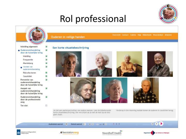 Rol professional