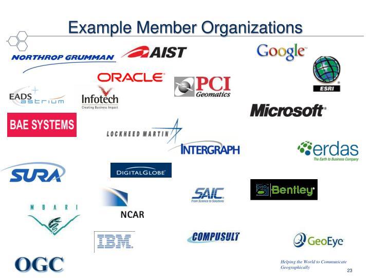 Example Member Organizations