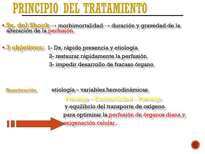 Principio del Tratamiento