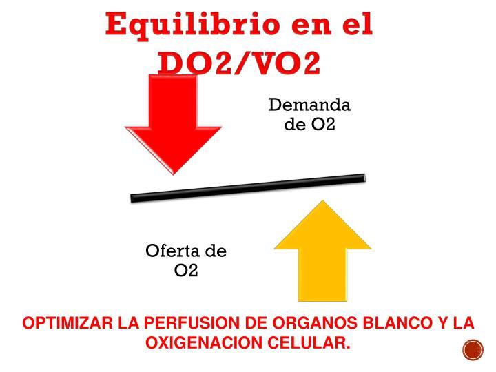 Equilibrio en el DO2/VO2