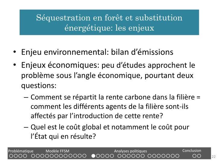 Séquestration en forêt et substitution énergétique: les enjeux