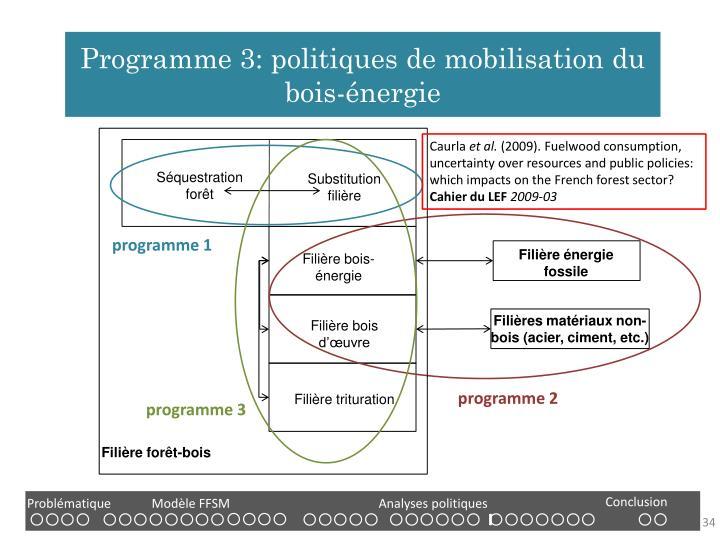 Programme 3: politiques de mobilisation du bois-énergie