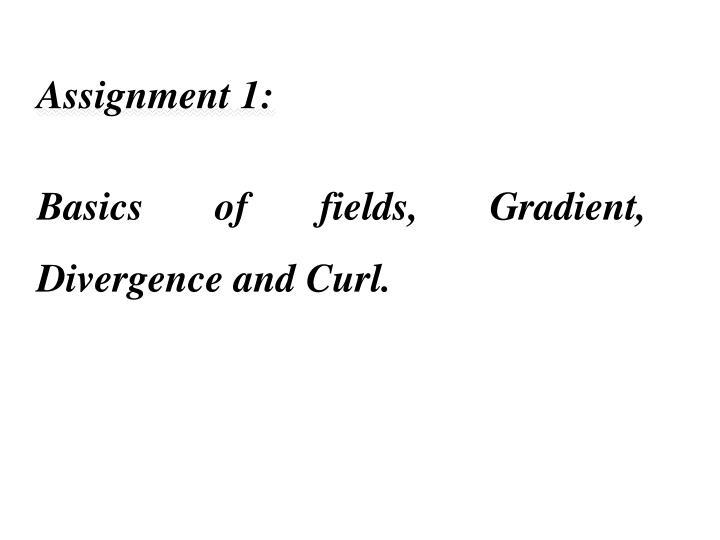 Assignment 1: