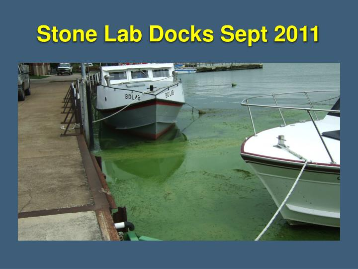 Stone Lab Docks Sept 2011