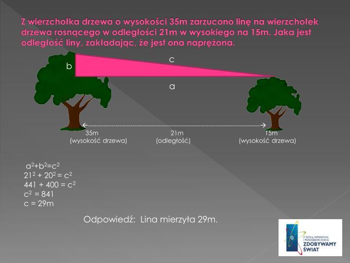 Z wierzchoka drzewa o wysokoci 35m zarzucono lin na wierzchoek drzewa rosncego w odlegoci 21m w wysokiego na 15m. Jaka jest odlego liny, zakadajc, e jest ona naprona.