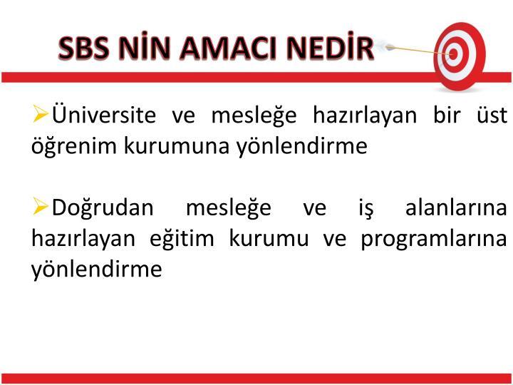 SBS NN AMACI NEDR