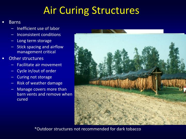 Air Curing Structures