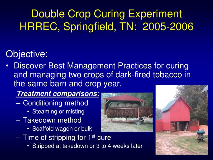 Double Crop Curing Experiment  HRREC, Springfield, TN:  2005-2006