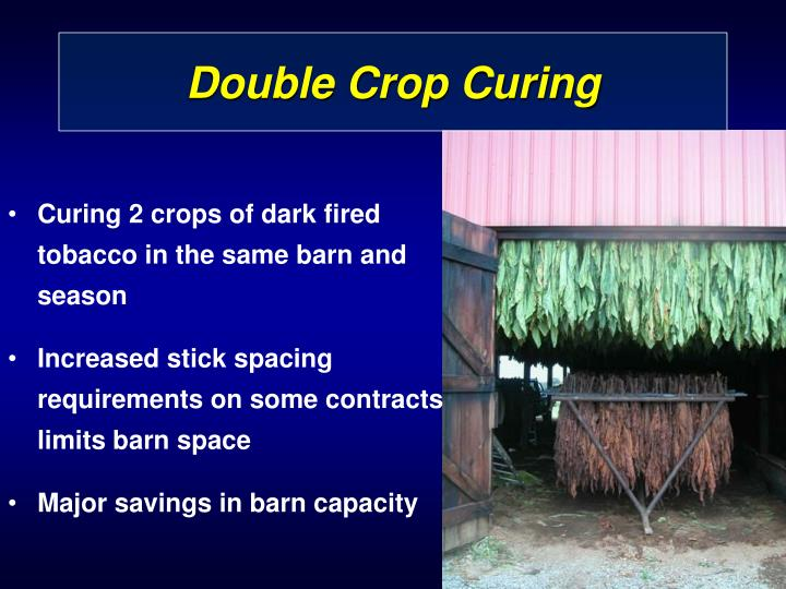 Double Crop Curing