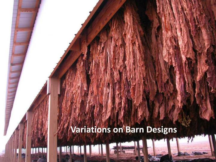 Variations on Barn Designs