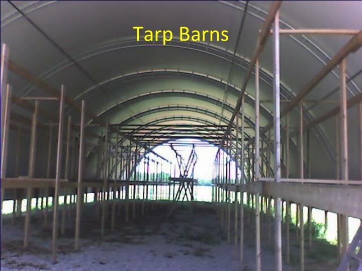 Tarp Barns