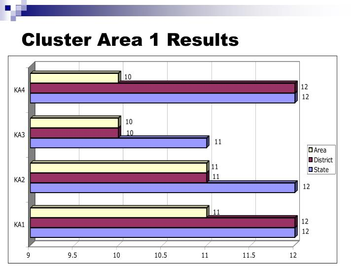 Cluster Area 1 Results