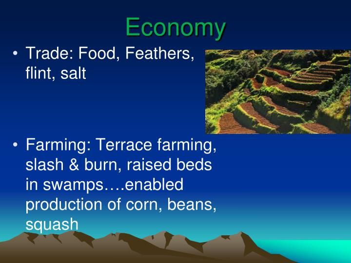 Ppt warm up powerpoint presentation id 3467921 for What does terrace farming mean