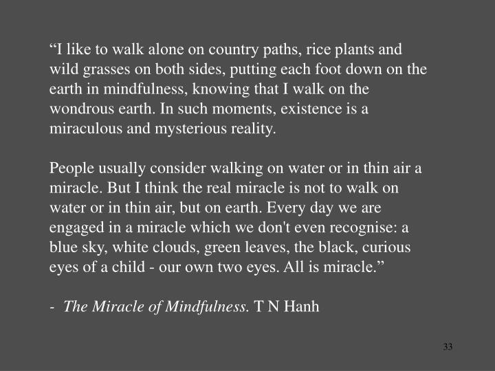 """I like to walk alone on country paths, rice plants and wild grasses on both sides, putting each foot down on the earth in mindfulness, knowing that I walk on the wondrous earth. In such moments, existence is a miraculous and mysterious reality."