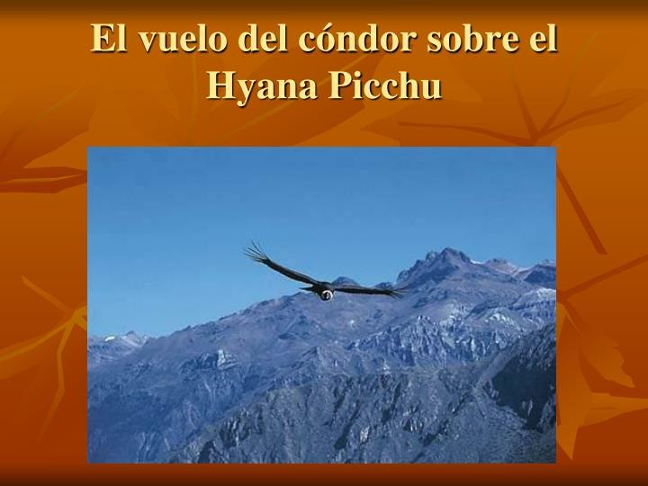 El vuelo del cóndor sobre el Hyana Picchu
