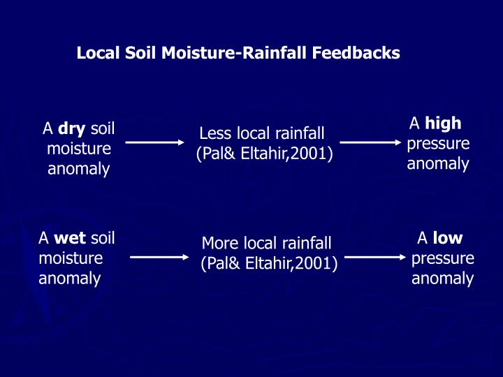 Local Soil Moisture-Rainfall Feedbacks