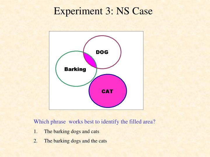 Experiment 3: NS Case