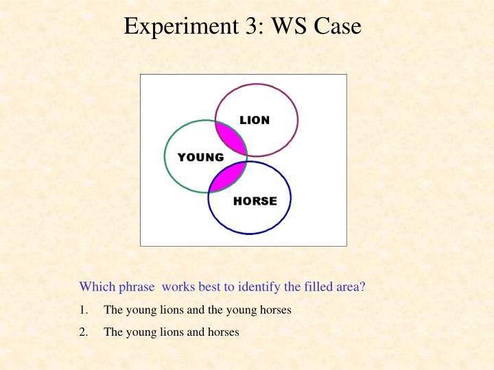 Experiment 3: WS Case