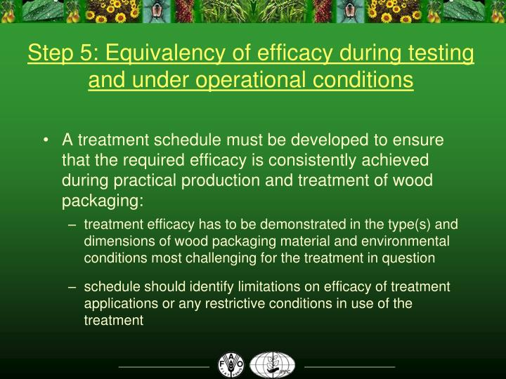 Step 5: Equivalency of efficacy during testing and under operational conditions