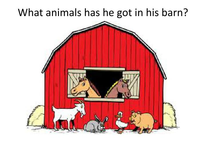 What animals has he gotin his barn?