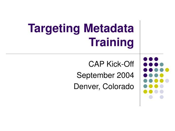 Targeting Metadata Training