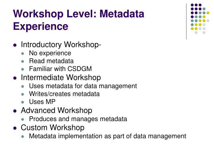 Workshop Level: Metadata Experience