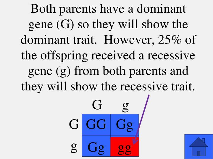 Both parents have a dominant gene (G) so they will show the dominant trait.  However, 25% of the offspring received a recessive gene (g) from both parents and they will show the recessive trait.