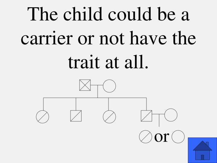 The child could be a carrier or not have the trait at all.